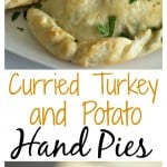 Curried Turkey and Potato Hand Pies