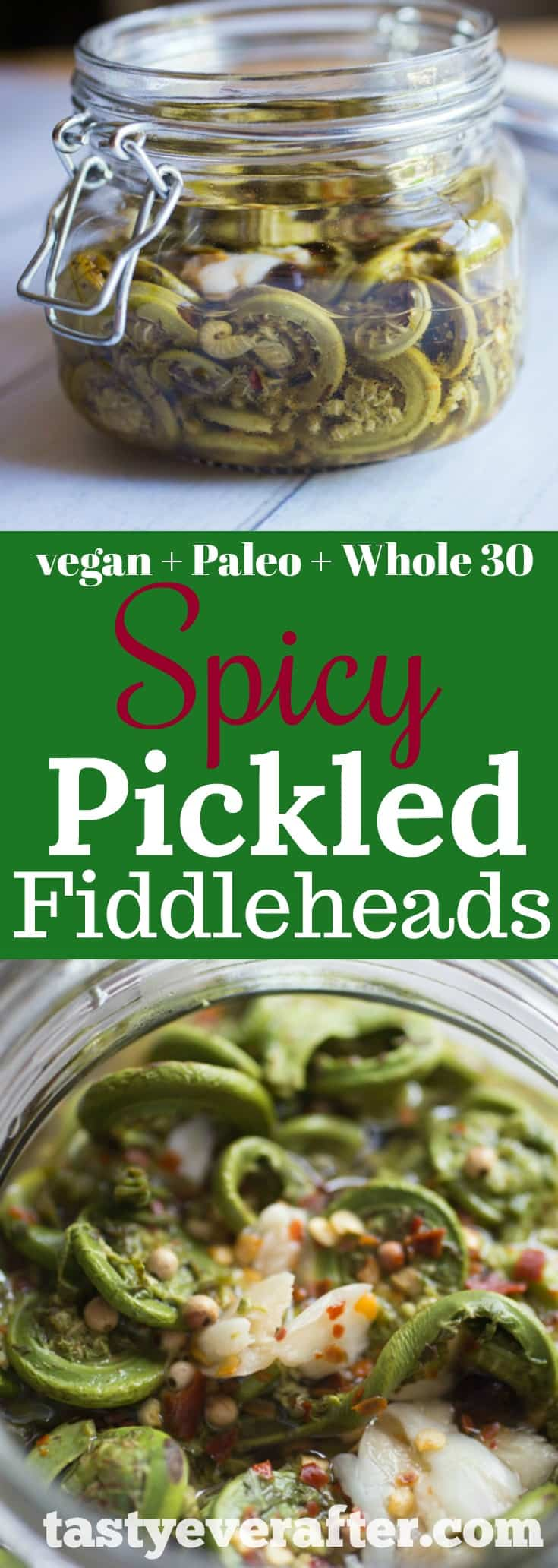 Spicy Pickled Fiddleheads Recipe