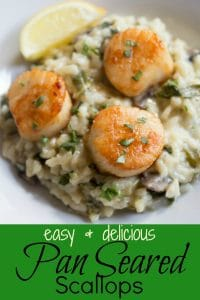 Pan seared scallops recipe pinterest PIN